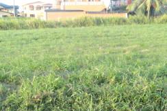(Land For Sale) Gopaul Lands, Marabella.