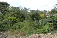 (Land For Sale) Main Road, Fyzabad.