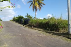 (Land For Sale) Rahaman Development, La Romaine.